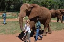 Nicole walking the elephant